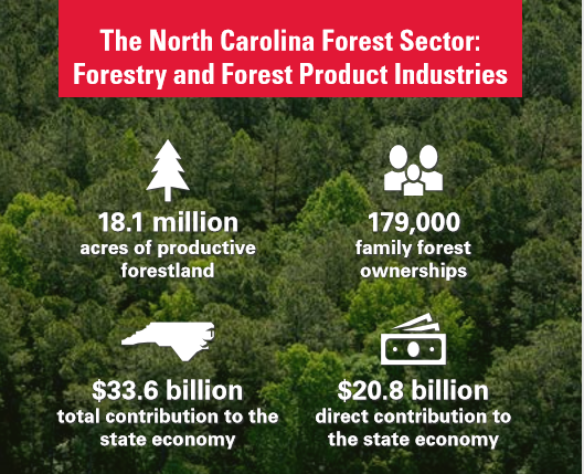 The North Carolina Forest Sector: Forestry and Forest Product Industries. 18.1 million acres of productive forestland. 179,000 family forest ownerships. $33.6 billion total contribution to the state economy. $20.8 billion direct contribution to the state economy.