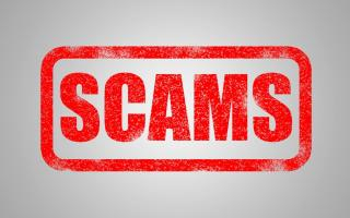 """bright red stamp of the work """"SCAMS"""""""
